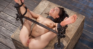 Italian fetish model Gabriella Paltrova struggles against machine ass ravage