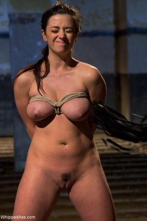 Flagellated Ass Bobbi Starr, Taylor Vixen