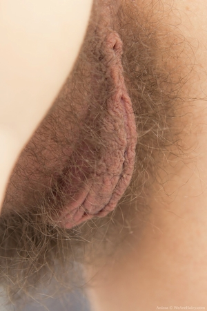 Hairy cunt - 16